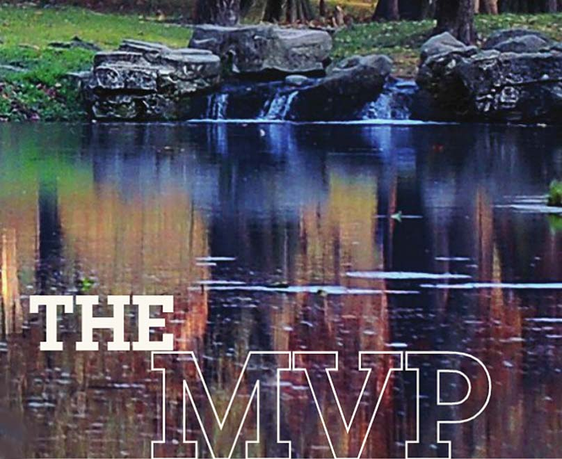 The MVP Series - Clayton Oxford Homes